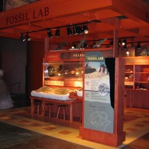 3d-dino-fossil-lab_medium